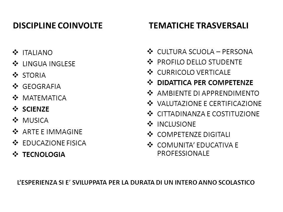 DISCIPLINE COINVOLTE  ITALIANO  LINGUA INGLESE  STORIA  GEOGRAFIA  MATEMATICA  SCIENZE  MUSICA  ARTE E IMMAGINE  EDUCAZIONE FISICA  TECNOLOGIA TEMATICHE TRASVERSALI  CULTURA SCUOLA – PERSONA  PROFILO DELLO STUDENTE  CURRICOLO VERTICALE  DIDATTICA PER COMPETENZE  AMBIENTE DI APPRENDIMENTO  VALUTAZIONE E CERTIFICAZIONE  CITTADINANZA E COSTITUZIONE  INCLUSIONE  COMPETENZE DIGITALI  COMUNITA' EDUCATIVA E PROFESSIONALE L'ESPERIENZA SI E' SVILUPPATA PER LA DURATA DI UN INTERO ANNO SCOLASTICO