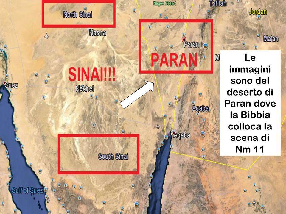 Anno B 27 settembre 2015 Domenica XXVl tempo ordinario Domenica XXVl tempo ordinario Deserto di Paran