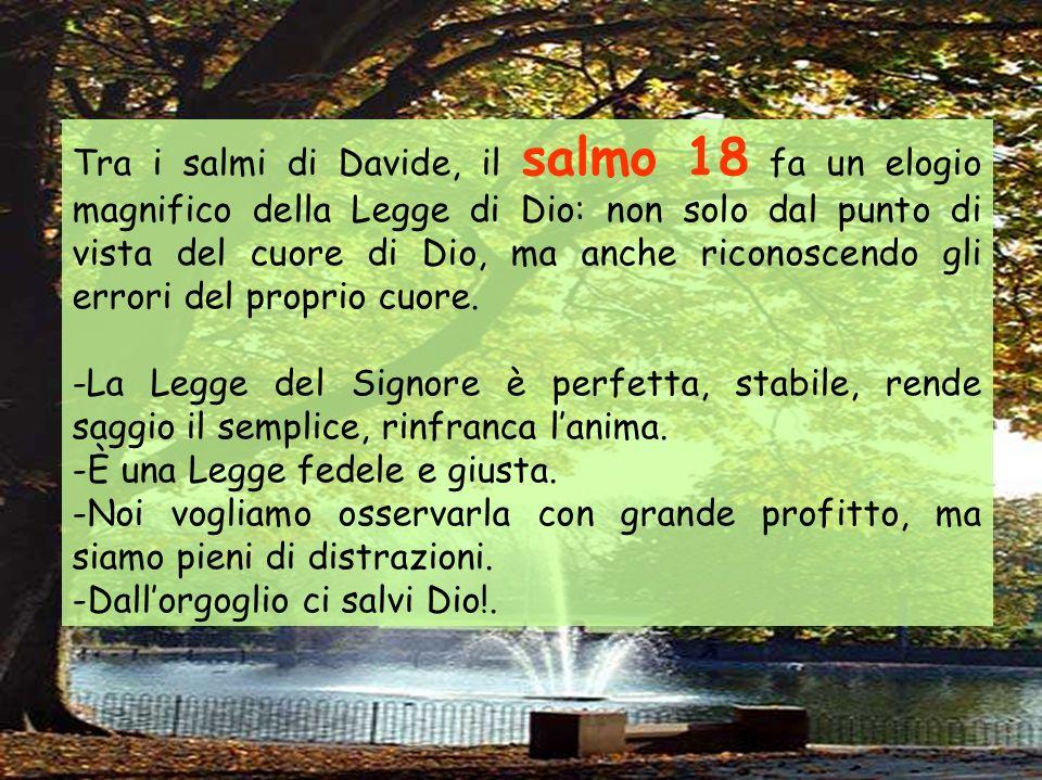 Dal libro dei Numeri In quei giorni, il Signore scese nella nube e parlò a Mosè: tolse parte dello spirito che era su di lui e lo pose sopra i settant