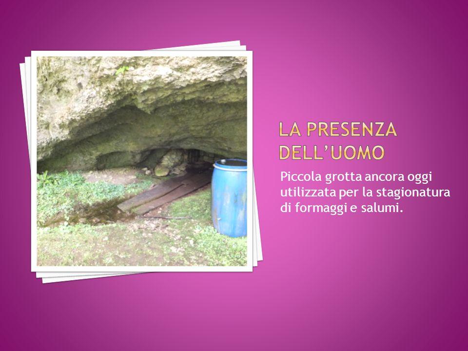 Piccola grotta ancora oggi utilizzata per la stagionatura di formaggi e salumi.