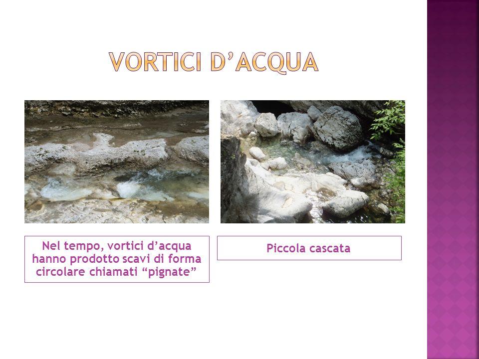 """Nel tempo, vortici d'acqua hanno prodotto scavi di forma circolare chiamati """"pignate"""" Piccola cascata"""