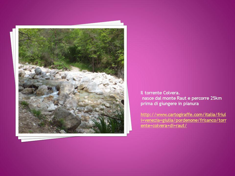 Il torrente Colvera. nasce dal monte Raut e percorre 25km prima di giungere in pianura http://www.cartogiraffe.com/italia/friul i+venezia+giulia/porde