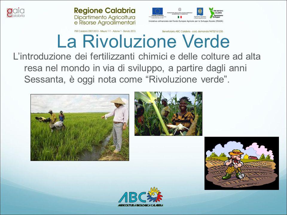 La Rivoluzione Verde L'introduzione dei fertilizzanti chimici e delle colture ad alta resa nel mondo in via di sviluppo, a partire dagli anni Sessanta, è oggi nota come Rivoluzione verde .