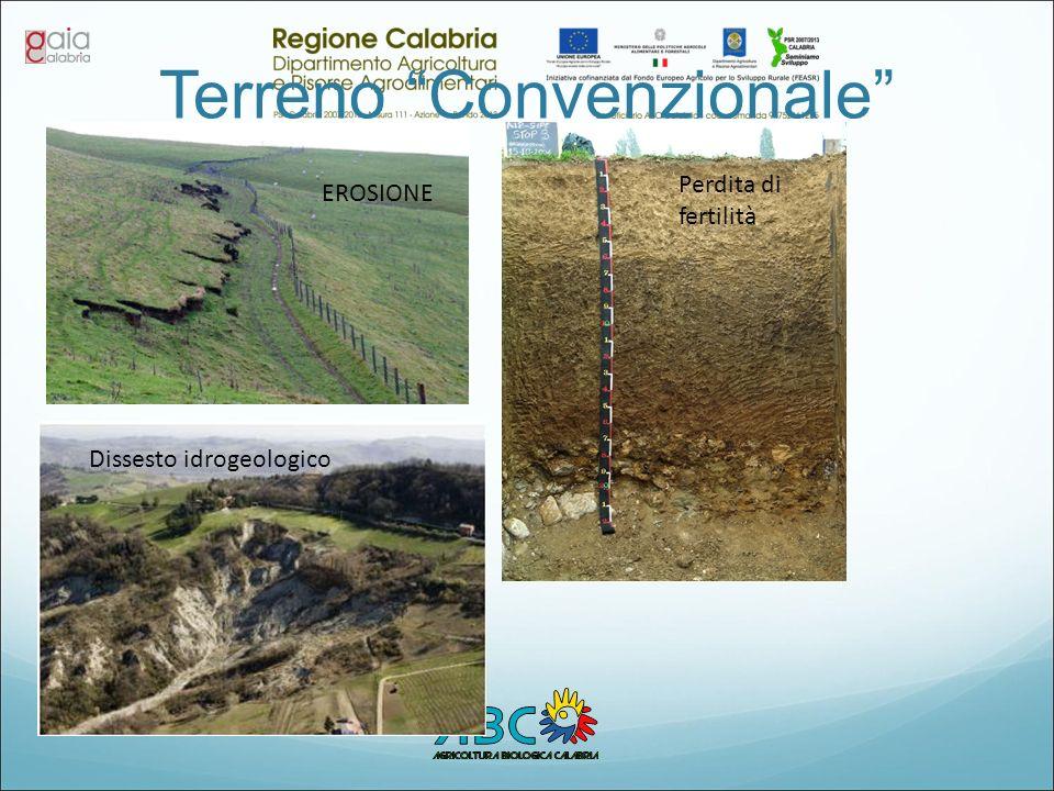 Terreno Convenzionale EROSIONE Perdita di fertilità Dissesto idrogeologico