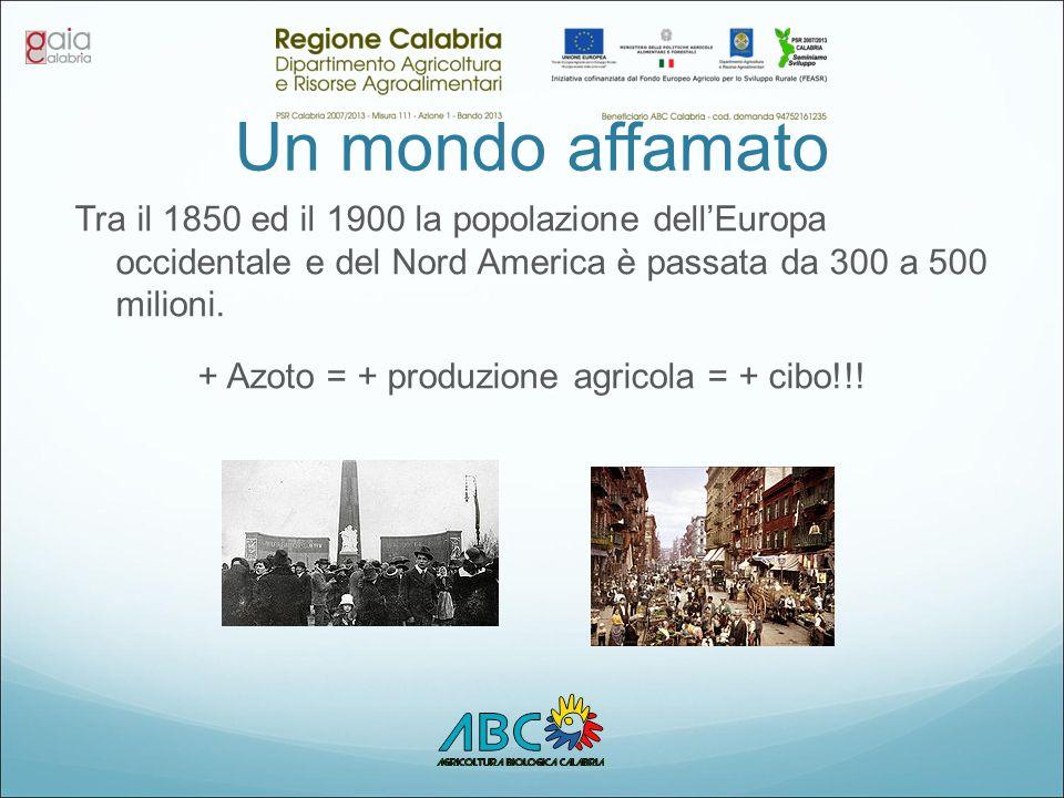 Un mondo affamato Tra il 1850 ed il 1900 la popolazione dell'Europa occidentale e del Nord America è passata da 300 a 500 milioni. + Azoto = + produzi