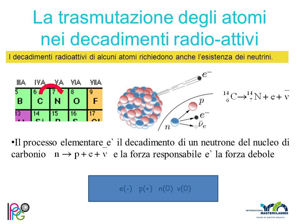 Il processo elementare e` il decadimento di un neutrone del nucleo di carbonio e la forza responsabile e` la forza debole La trasmutazione degli atomi nei decadimenti radio-attivi I decadimenti radioattivi di alcuni atomi richiedono anche l'esistenza dei neutrini.