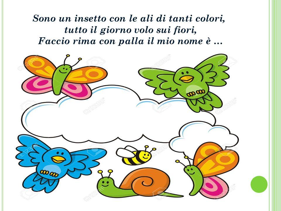 Sono un insetto con le ali di tanti colori, tutto il giorno volo sui fiori, Faccio rima con palla il mio nome è …