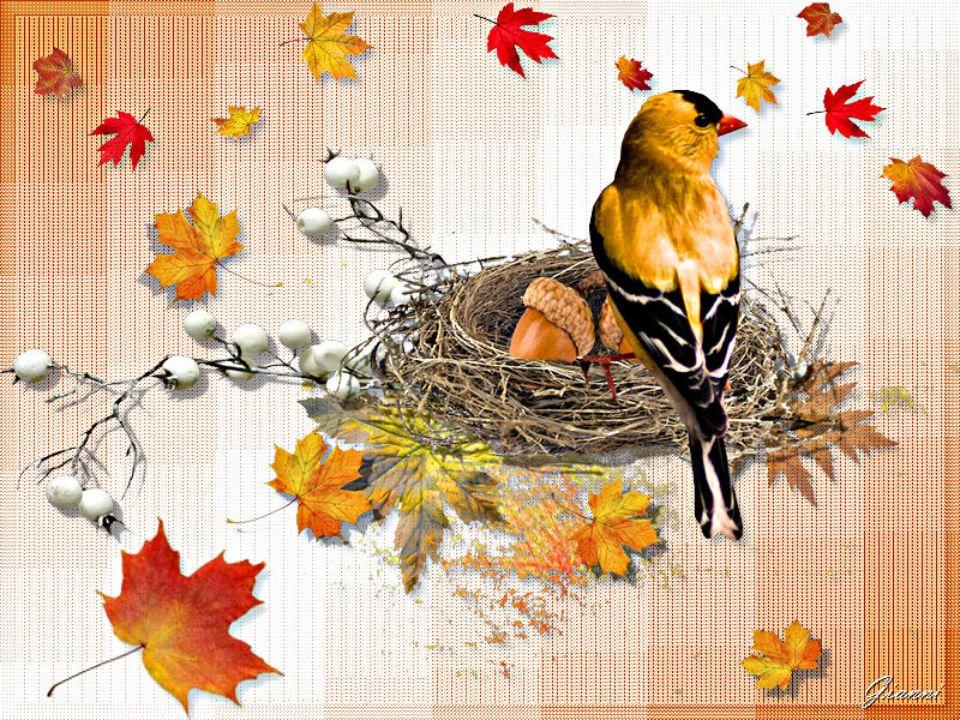 Come varia il colore delle stagioni, così gli umori e i pensieri degli uomini. Tutto nel mondo è mutevole tempo. Ed ecco, è già pallido, sepolcrale au