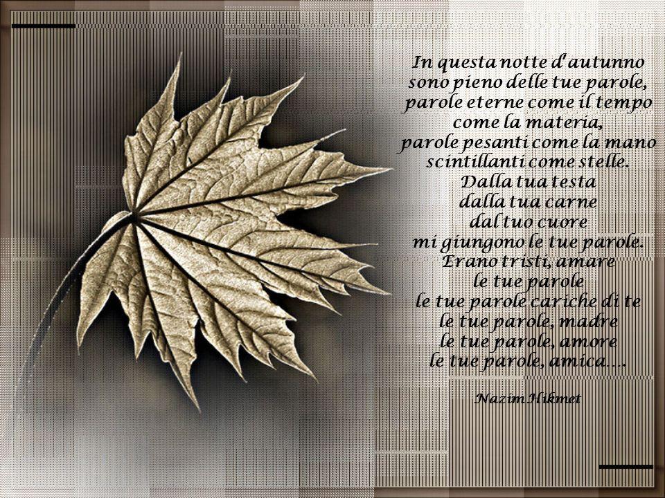 In questa notte d'autunno sono pieno delle tue parole, parole eterne come il tempo come la materia, parole pesanti come la mano scintillanti come stelle.