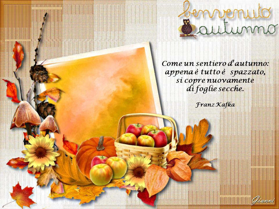 Come un sentiero d'autunno: appena è tutto è spazzato, si copre nuovamente di foglie secche.