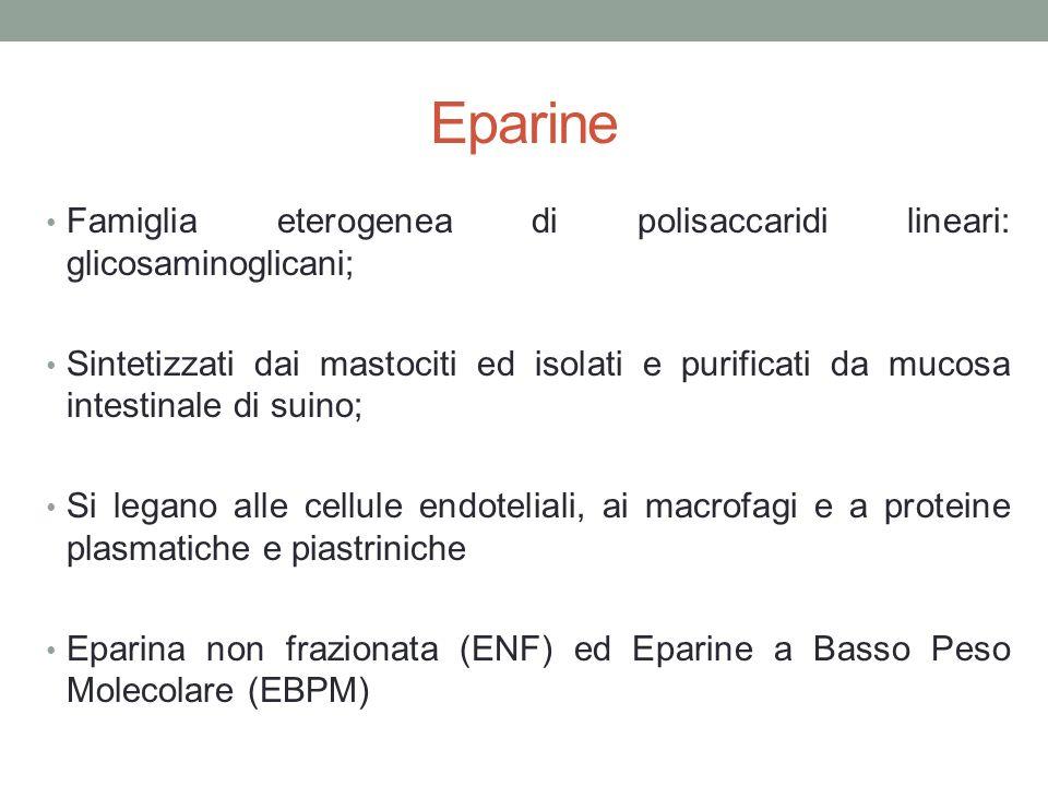 Eparine Famiglia eterogenea di polisaccaridi lineari: glicosaminoglicani; Sintetizzati dai mastociti ed isolati e purificati da mucosa intestinale di suino; Si legano alle cellule endoteliali, ai macrofagi e a proteine plasmatiche e piastriniche Eparina non frazionata (ENF) ed Eparine a Basso Peso Molecolare (EBPM)
