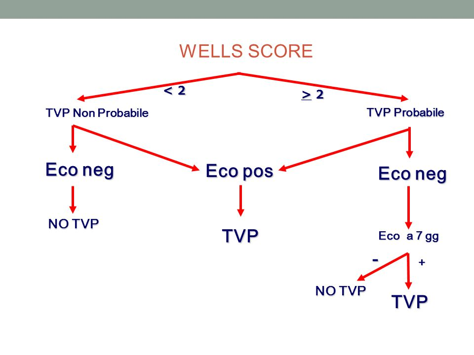 TVP Non Probabile Eco neg TVP Probabile Eco pos TVP Eco neg NO TVP Eco a 7 gg - + TVP < 2 > 2> 2> 2> 2 WELLS SCORE