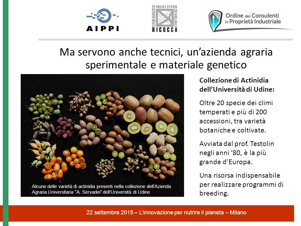 22 settembre 2015 – L'innovazione per nutrire il pianeta – Milano Ma servono anche tecnici, un'azienda agraria sperimentale e materiale genetico Alcune delle varietà di actinidia presenti nella collezione dell'Azienda Agraria Universitaria A.