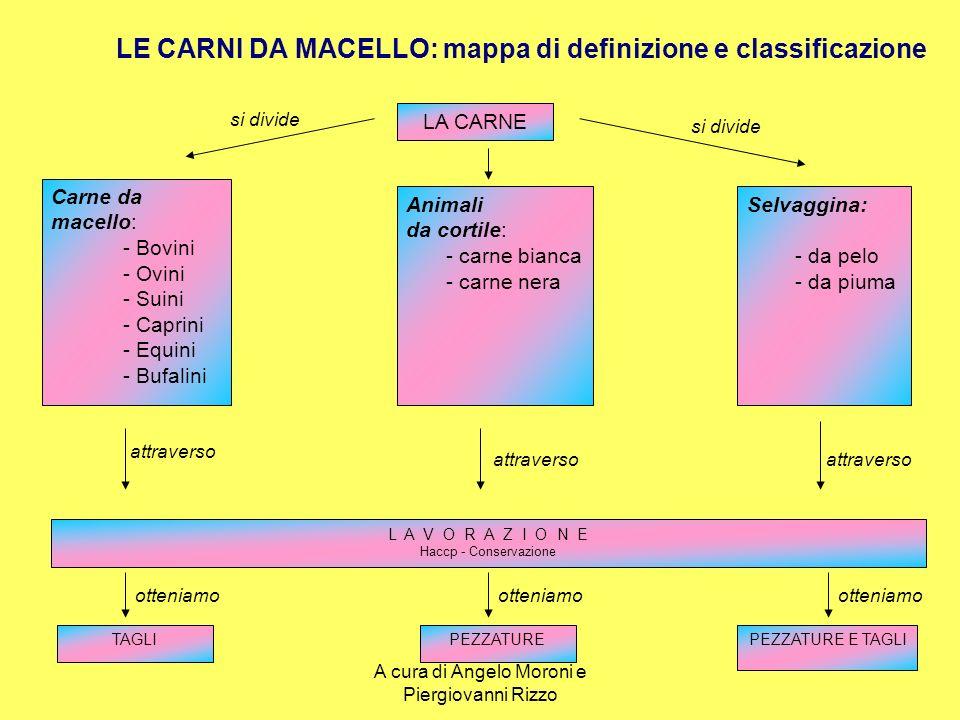I tagli del vitello COSCIA Oltre al pesce (2^categoria) e il garretto (3^categoria), è costituito da tagli di 1^, quali: Fesa, Scamone, Noce, Girello e Sottofesa.