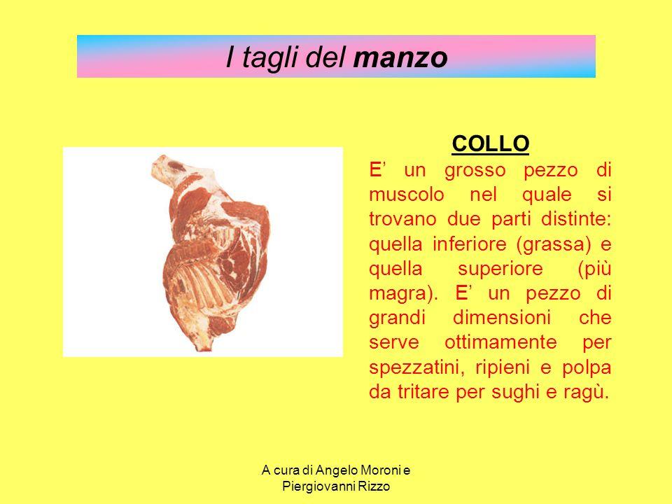 I tagli del manzo COLLO E' un grosso pezzo di muscolo nel quale si trovano due parti distinte: quella inferiore (grassa) e quella superiore (più magra