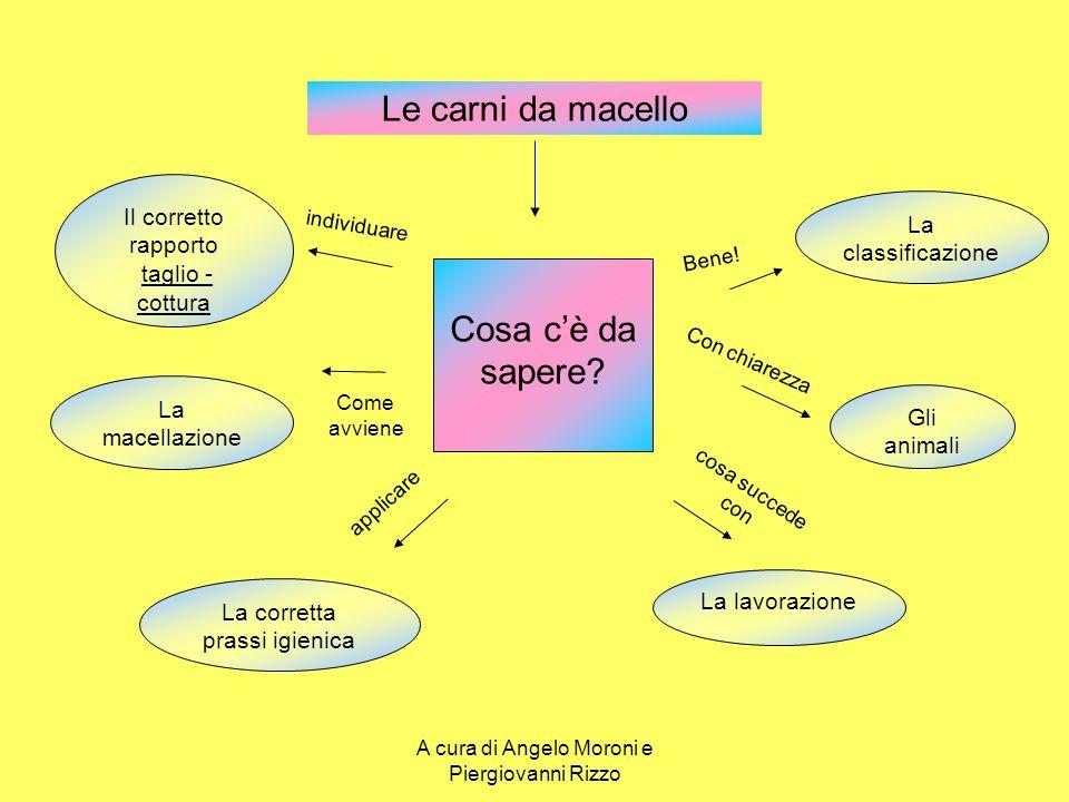 I tagli del suino …successivamente in quarti A cura di Angelo Moroni e Piergiovanni Rizzo
