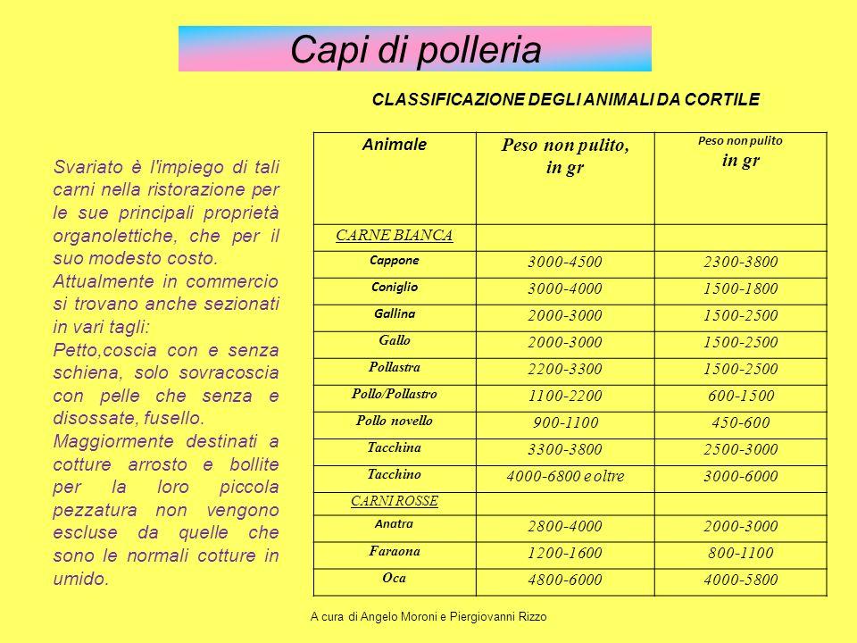 Capi di polleria Animale Peso non pulito, in gr Peso non pulito in gr CARNE BIANCA Cappone 3000-45002300-3800 Coniglio 3000-40001500-1800 Gallina 2000