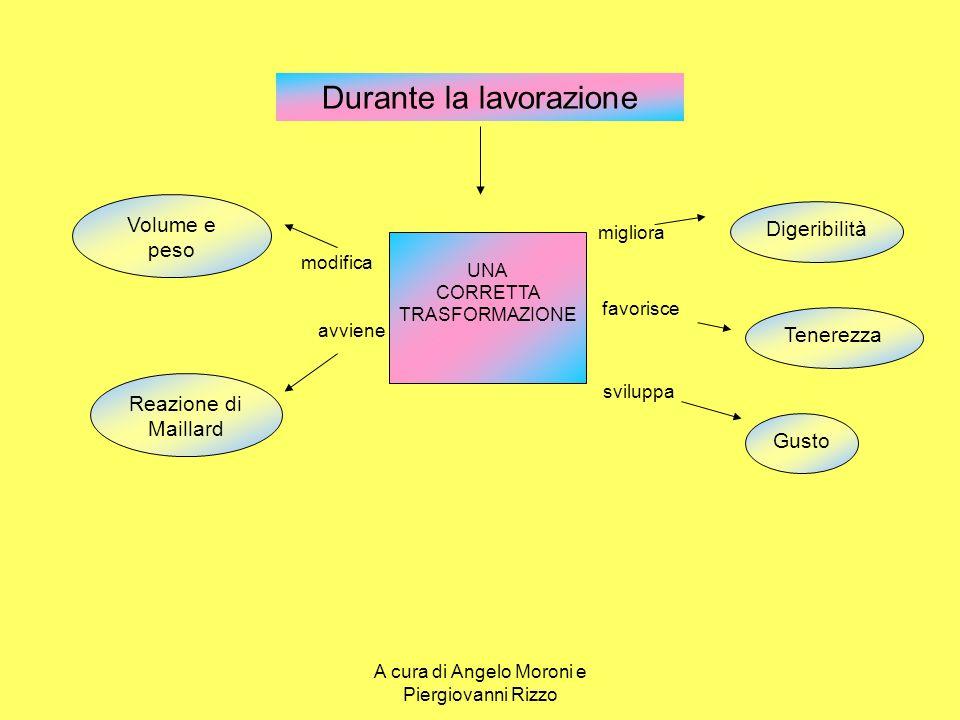 Classificazione U.E.