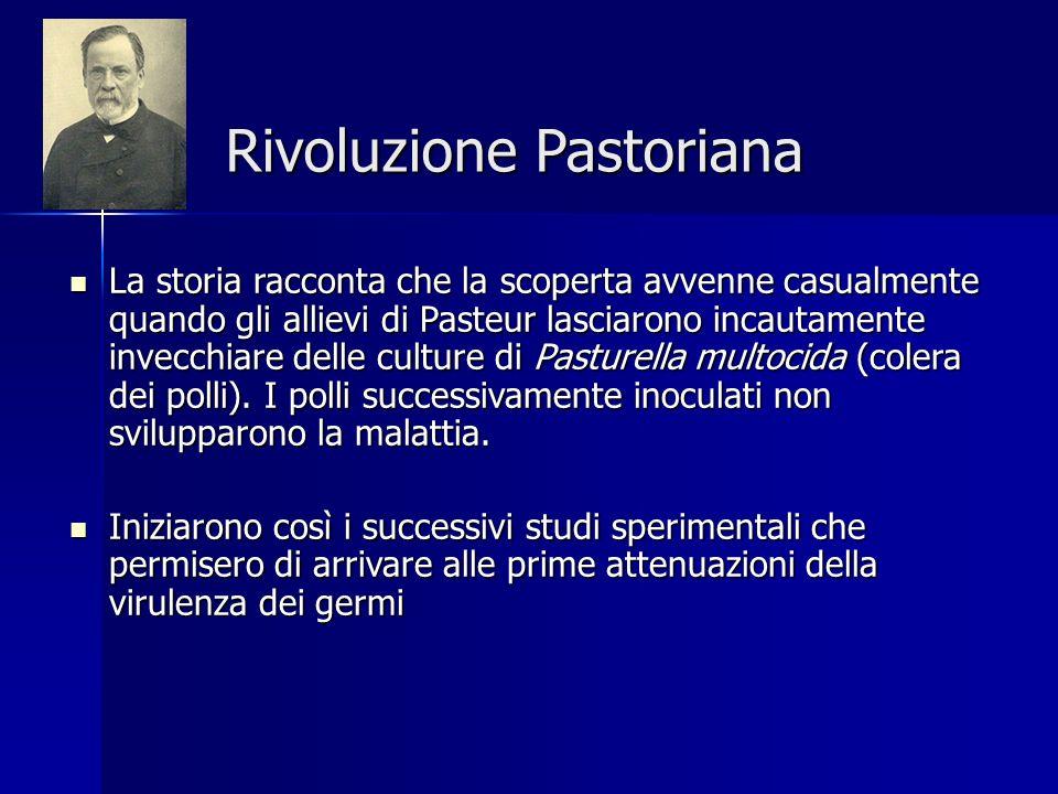 Rivoluzione Pastoriana La storia racconta che la scoperta avvenne casualmente quando gli allievi di Pasteur lasciarono incautamente invecchiare delle culture di Pasturella multocida (colera dei polli).