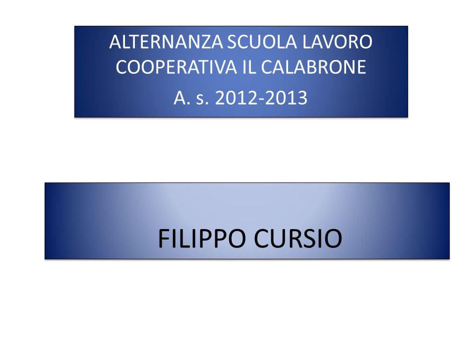 FILIPPO CURSIO ALTERNANZA SCUOLA LAVORO COOPERATIVA IL CALABRONE A. s. 2012-2013 ALTERNANZA SCUOLA LAVORO COOPERATIVA IL CALABRONE A. s. 2012-2013