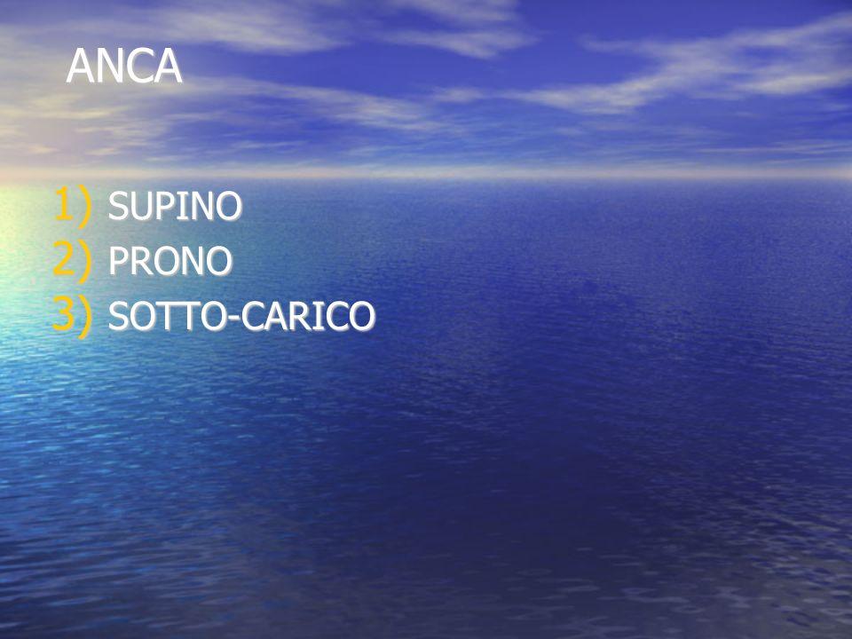 ANCA ANCA 1) SUPINO 2) PRONO 3) SOTTO-CARICO