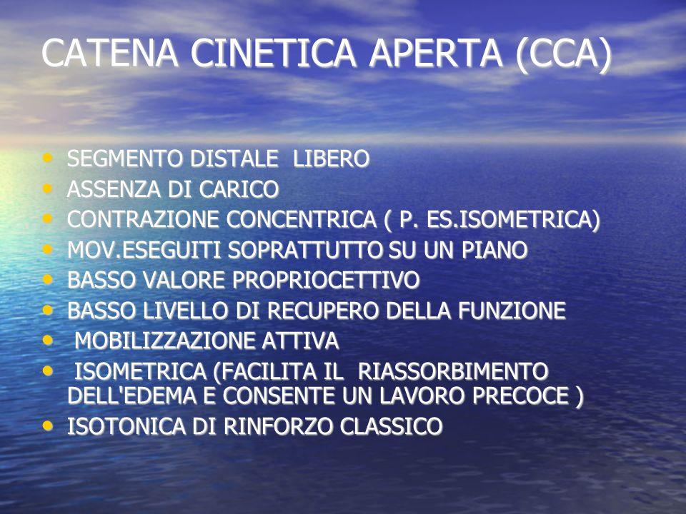 CATENA CINETICA APERTA (CCA) SEGMENTO DISTALE LIBERO SEGMENTO DISTALE LIBERO ASSENZA DI CARICO ASSENZA DI CARICO CONTRAZIONE CONCENTRICA ( P. ES.ISOME