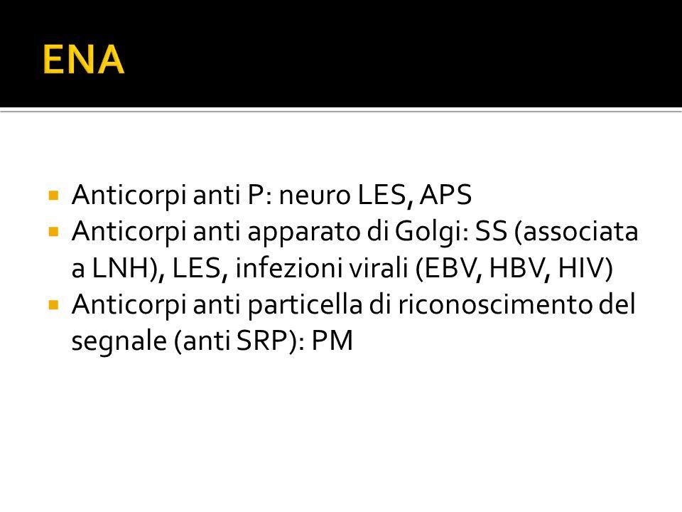  Anticorpi anti P: neuro LES, APS  Anticorpi anti apparato di Golgi: SS (associata a LNH), LES, infezioni virali (EBV, HBV, HIV)  Anticorpi anti pa
