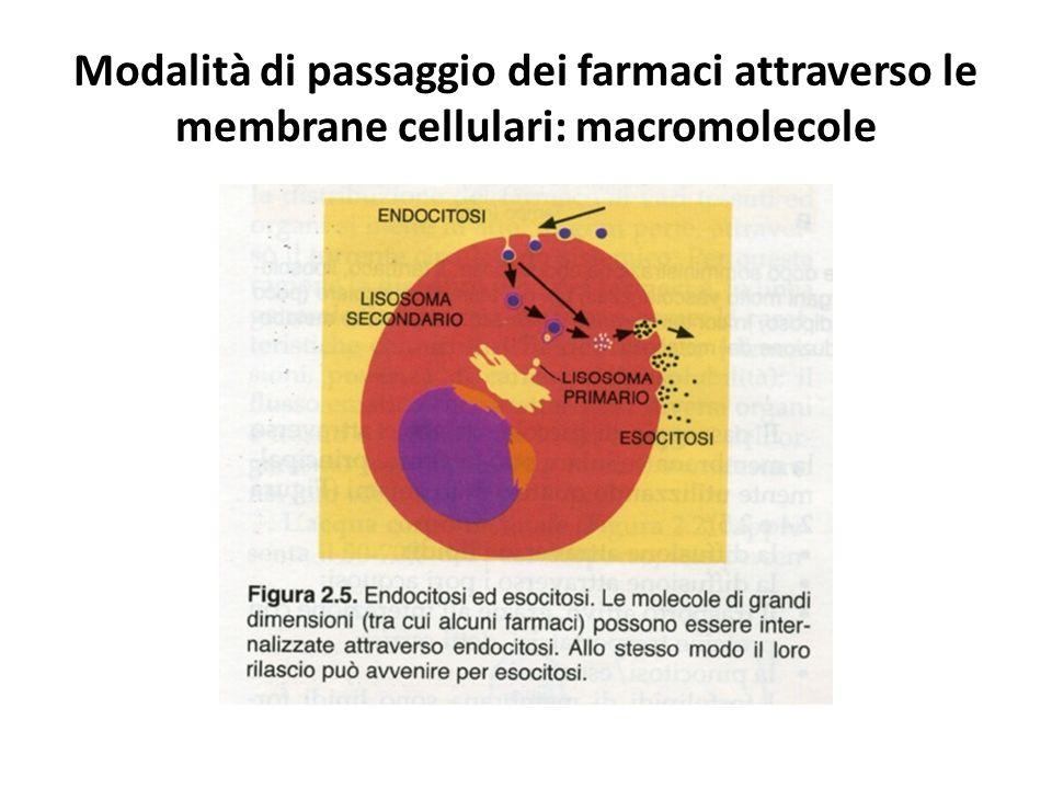 Modalità di passaggio dei farmaci attraverso le membrane cellulari: macromolecole