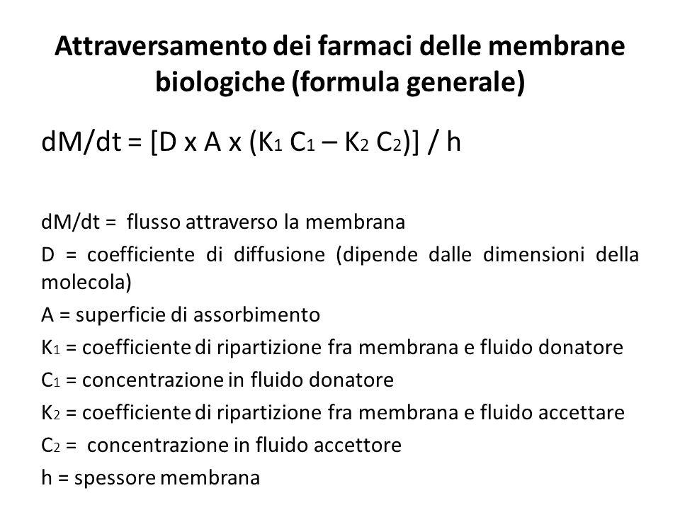 dM/dt = [D x A x (K 1 C 1 – K 2 C 2 )] / h dM/dt = flusso attraverso la membrana D = coefficiente di diffusione (dipende dalle dimensioni della moleco