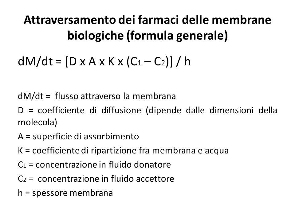 dM/dt = [D x A x K x (C 1 – C 2 )] / h dM/dt = flusso attraverso la membrana D = coefficiente di diffusione (dipende dalle dimensioni della molecola)