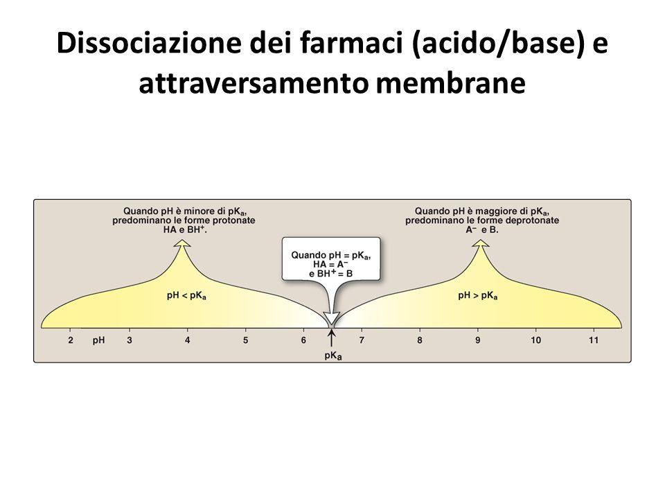 Dissociazione dei farmaci (acido/base) e attraversamento membrane
