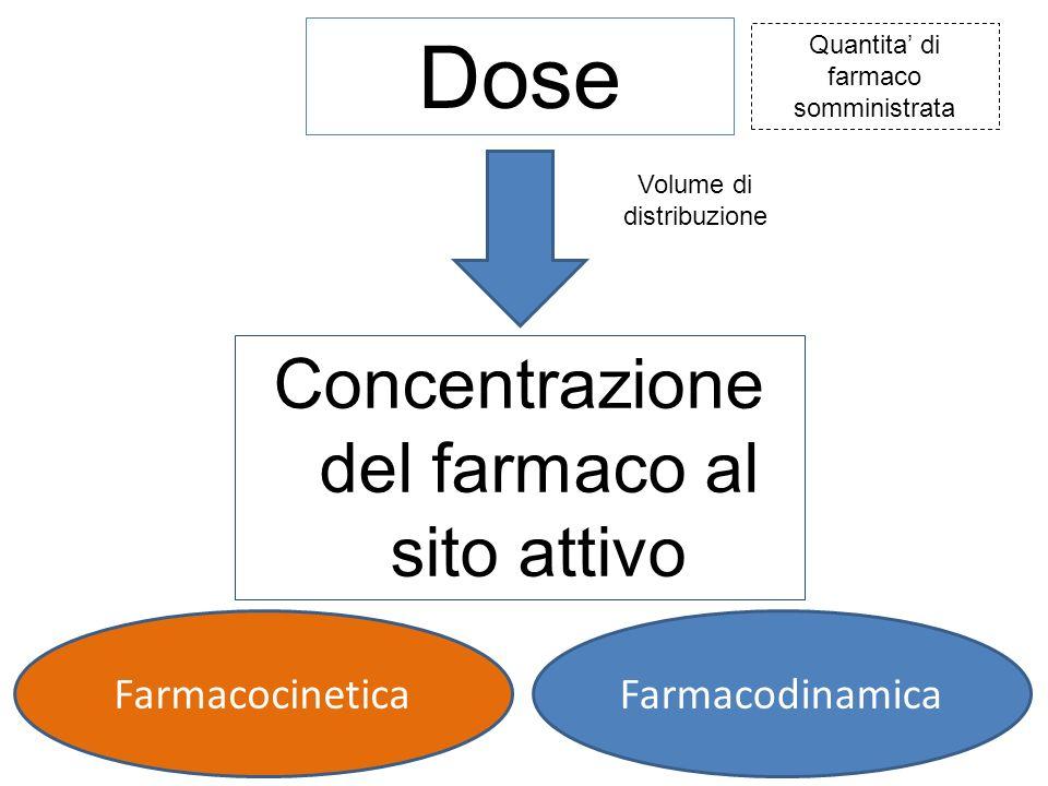 Dose Quantita' di farmaco somministrata Volume di distribuzione Concentrazione del farmaco al sito attivo FarmacocineticaFarmacodinamica