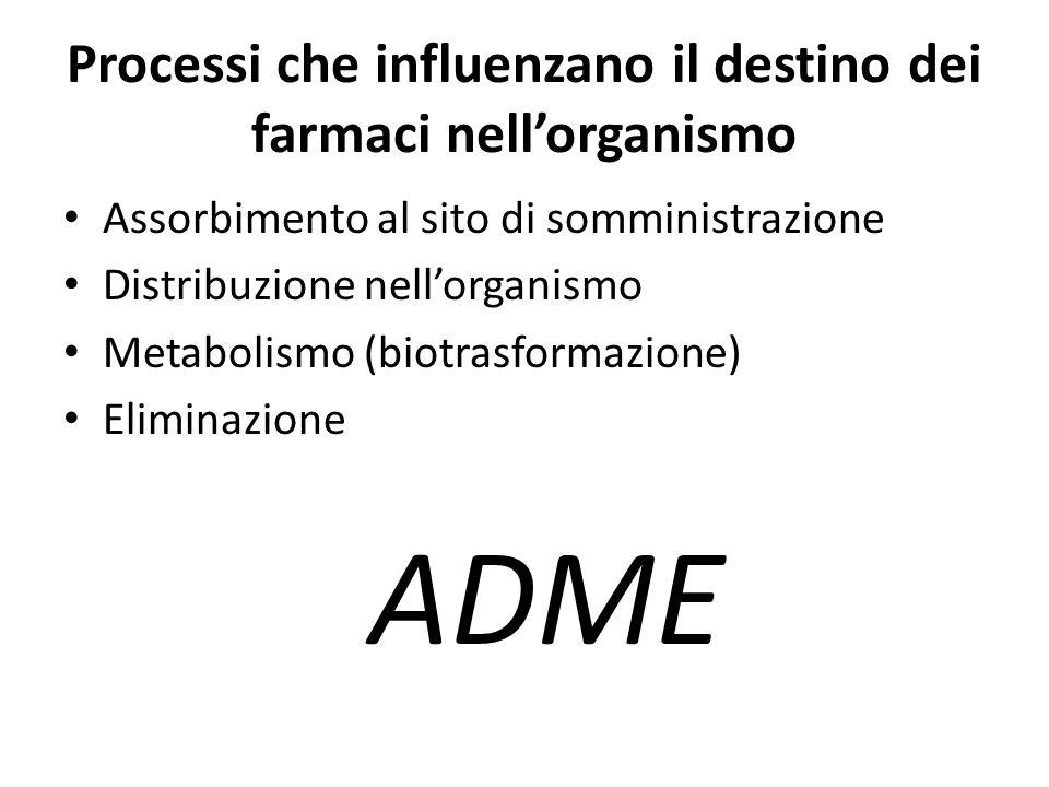 Processi che influenzano il destino dei farmaci nell'organismo Assorbimento al sito di somministrazione Distribuzione nell'organismo Metabolismo (biot