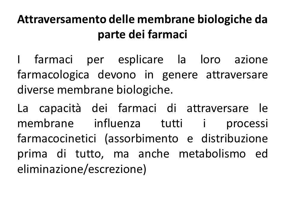 Attraversamento delle membrane biologiche da parte dei farmaci I farmaci per esplicare la loro azione farmacologica devono in genere attraversare dive