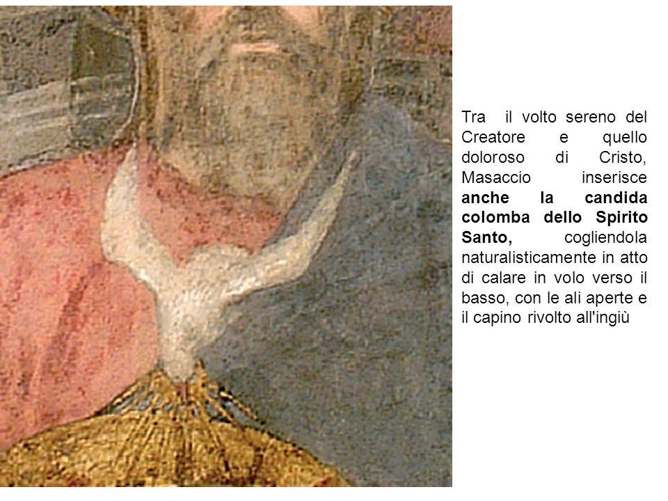 Tra il volto sereno del Creatore e quello doloroso di Cristo, Masaccio inserisce anche la candida colomba dello Spirito Santo, cogliendola naturalisti