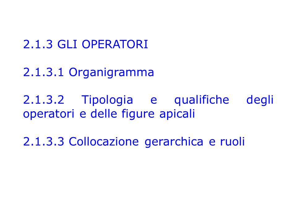 2.1.3 GLI OPERATORI 2.1.3.1 Organigramma 2.1.3.2 Tipologia e qualifiche degli operatori e delle figure apicali 2.1.3.3 Collocazione gerarchica e ruoli