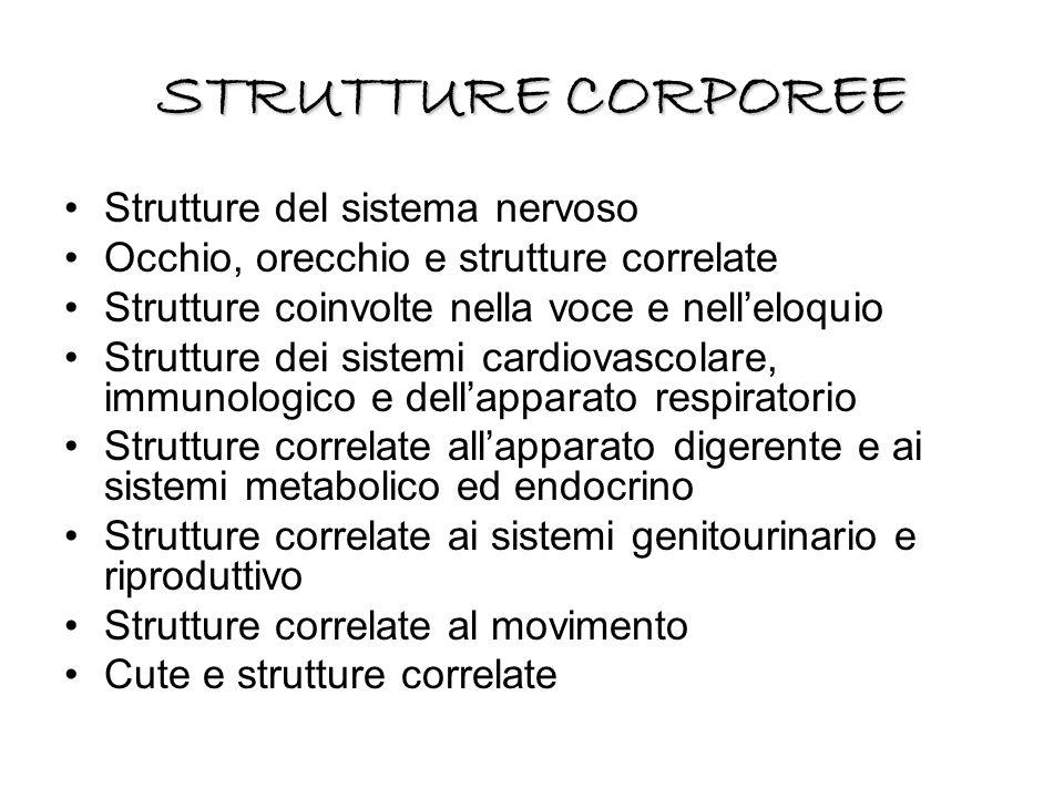 STRUTTURE CORPOREE Strutture del sistema nervoso Occhio, orecchio e strutture correlate Strutture coinvolte nella voce e nell'eloquio Strutture dei si