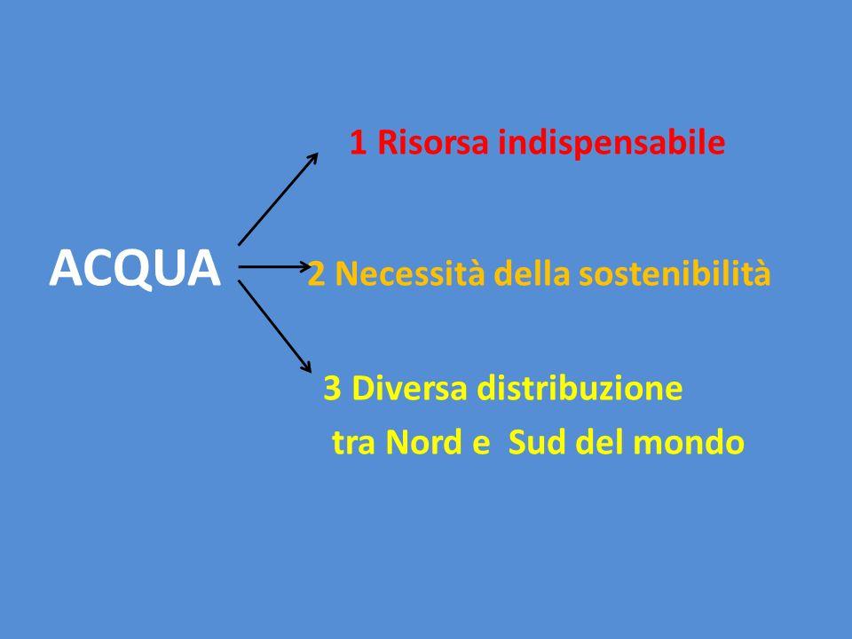 1 Risorsa indispensabile ACQUA 2 Necessità della sostenibilità 3 Diversa distribuzione tra Nord e Sud del mondo