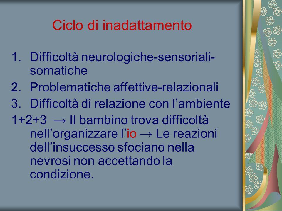 Ciclo di inadattamento 1.Difficoltà neurologiche-sensoriali- somatiche 2.Problematiche affettive-relazionali 3.Difficoltà di relazione con l'ambiente