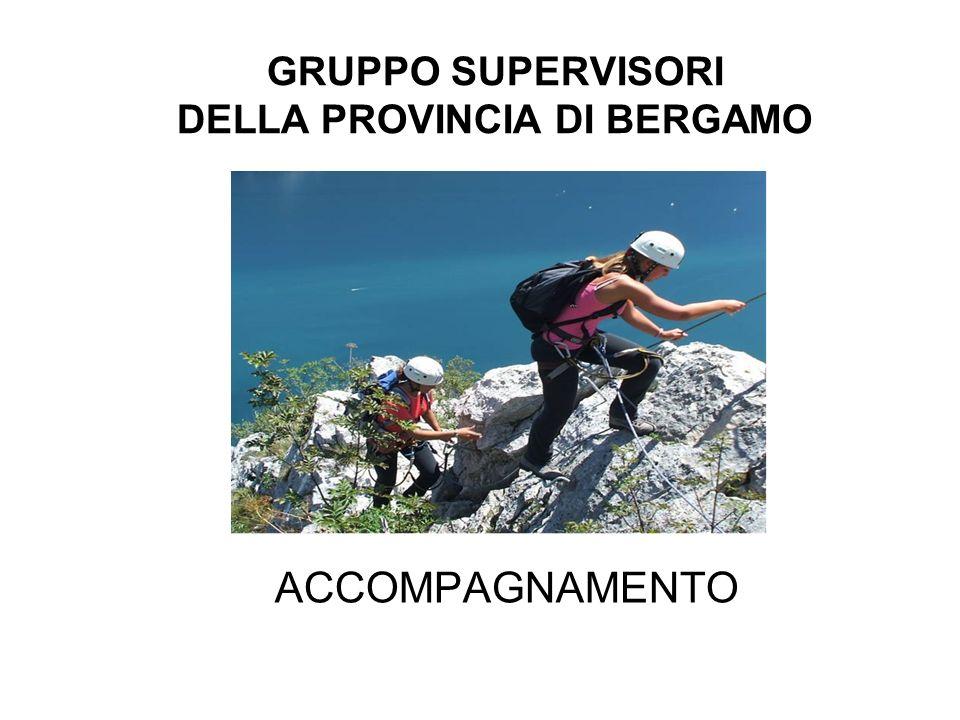 GRUPPO SUPERVISORI DELLA PROVINCIA DI BERGAMO ACCOMPAGNAMENTO