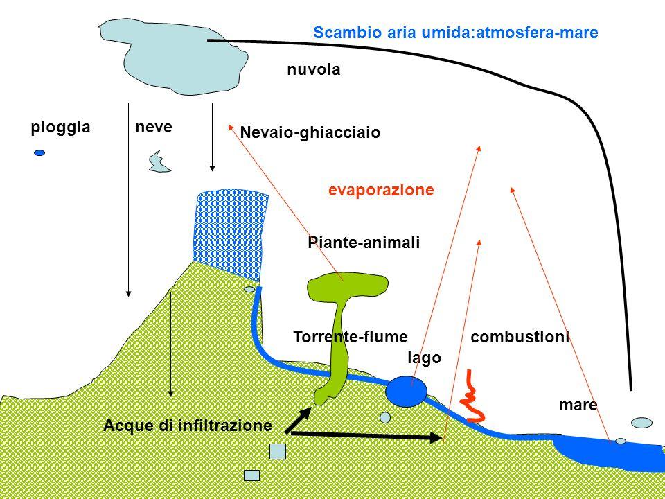 nuvola pioggianeve Nevaio-ghiacciaio Piante-animali lago mare Torrente-fiume Acque di infiltrazione combustioni Scambio aria umida:atmosfera-mare evap