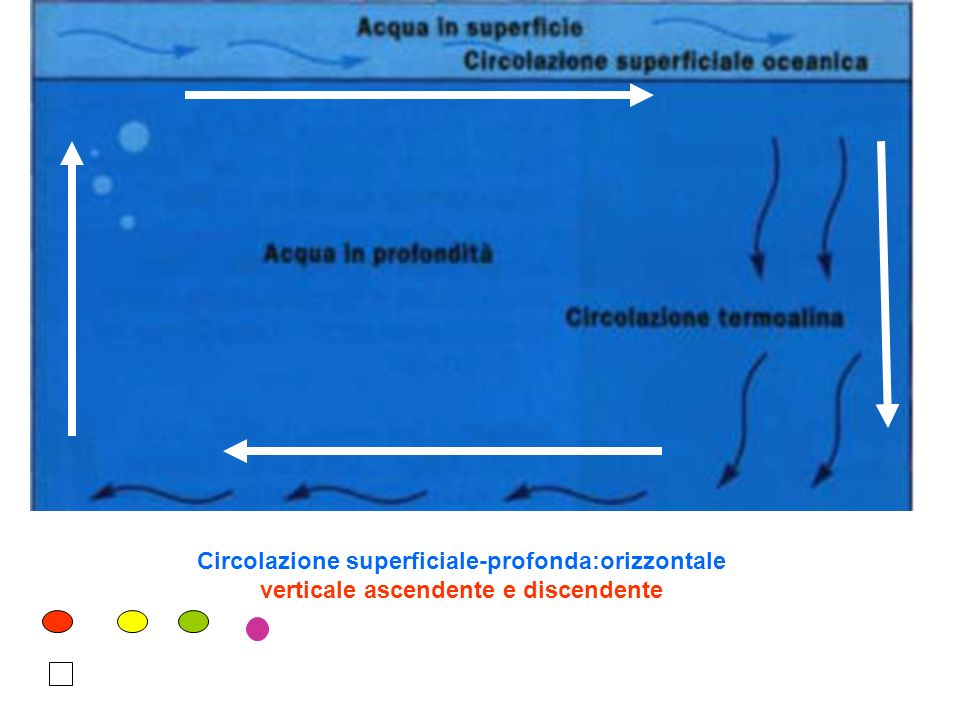 Correnti oceaniche atlantiche nord equatoriale Sud equatoriale Labrador- groelandia Antartica falkland canarie benguela labrador groelandia canarie benguela falkland antartica golfo Nord eq.