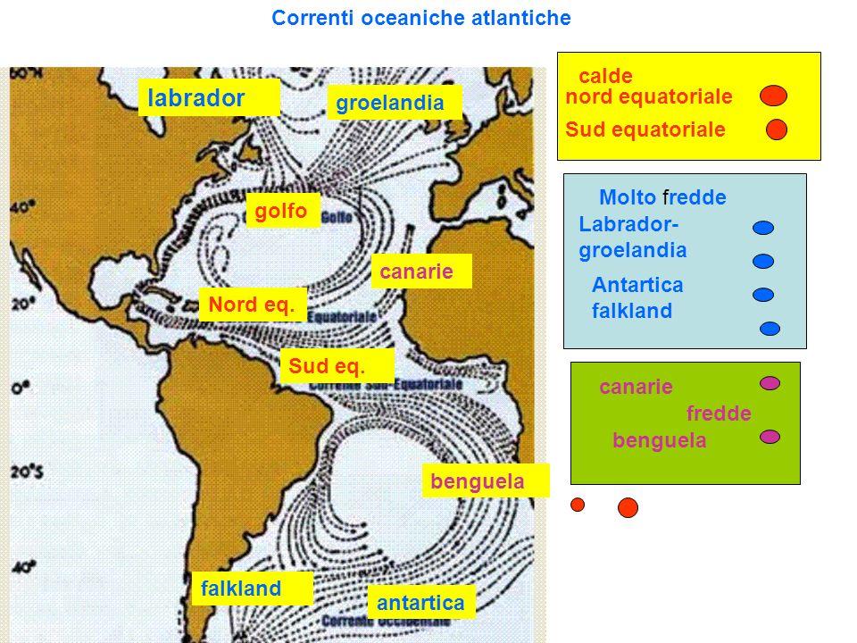 Correnti oceaniche atlantiche nord equatoriale Sud equatoriale Labrador- groelandia Antartica falkland canarie benguela labrador groelandia canarie be
