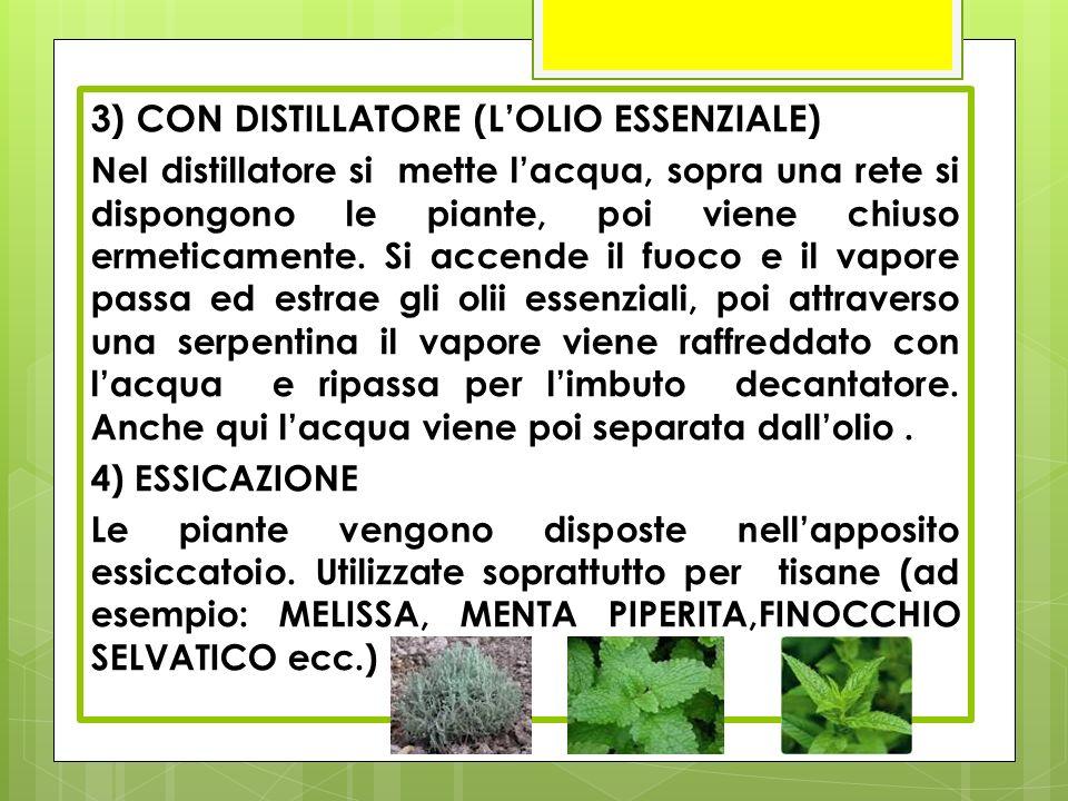 3) CON DISTILLATORE (L'OLIO ESSENZIALE) Nel distillatore si mette l'acqua, sopra una rete si dispongono le piante, poi viene chiuso ermeticamente. Si
