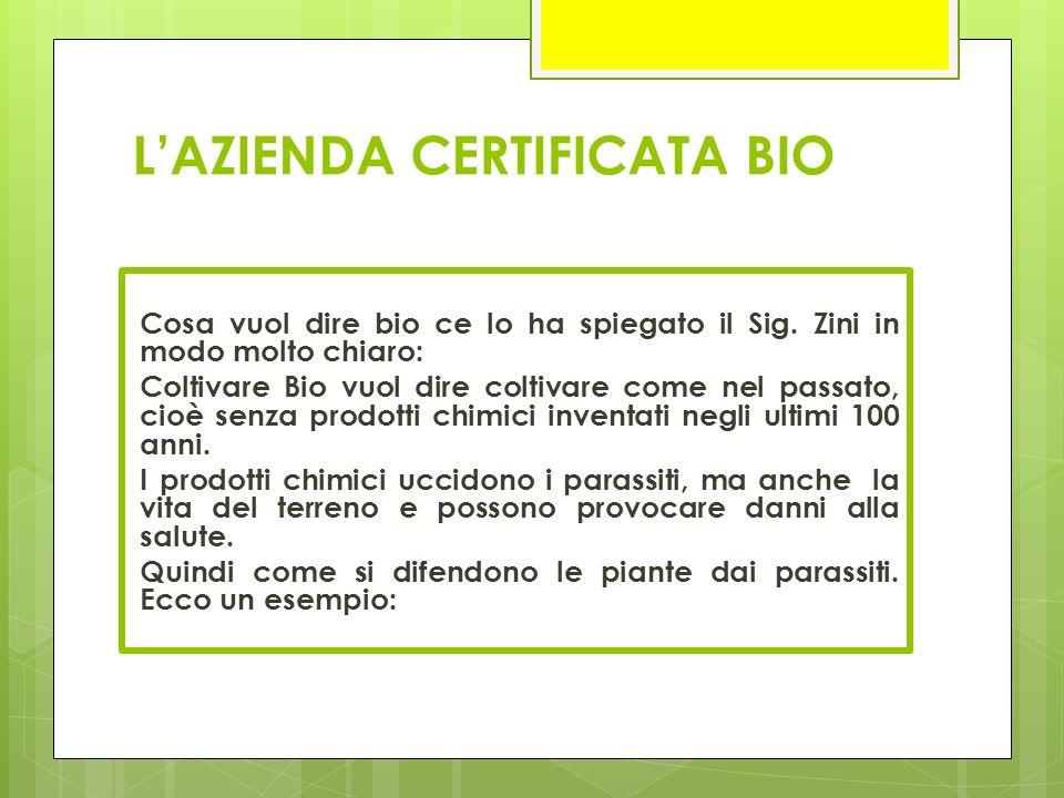 L'AZIENDA CERTIFICATA BIO Cosa vuol dire bio ce lo ha spiegato il Sig. Zini in modo molto chiaro: Coltivare Bio vuol dire coltivare come nel passato,