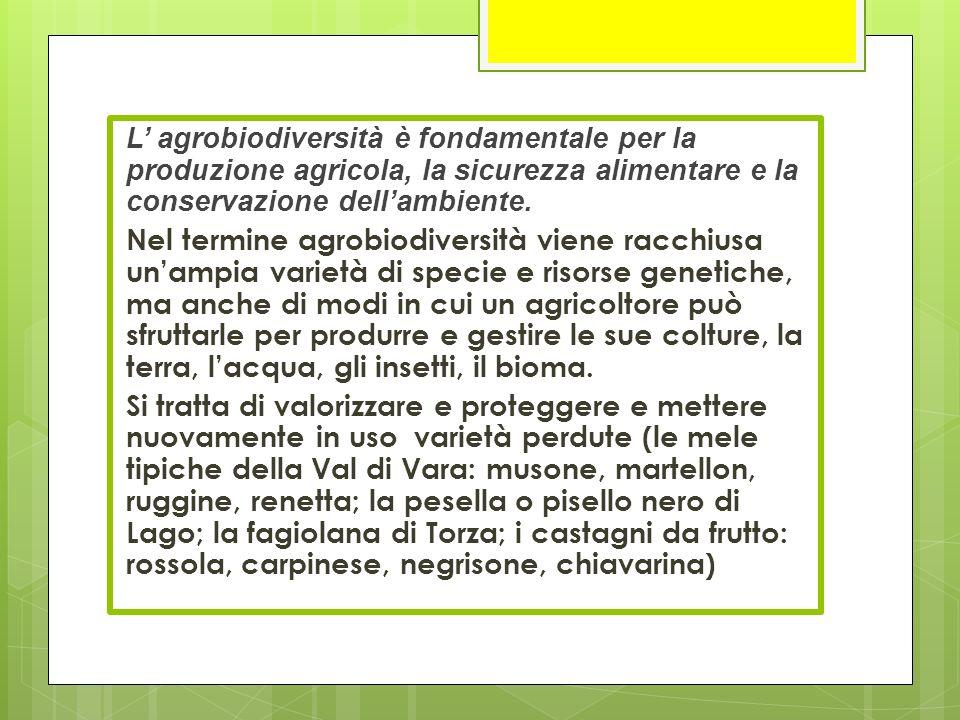 L' agrobiodiversità è fondamentale per la produzione agricola, la sicurezza alimentare e la conservazione dell'ambiente. Nel termine agrobiodiversità