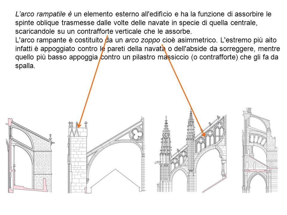 L'arco rampatile è un elemento esterno all edifìcio e ha la funzione di assorbire le spinte oblique trasmesse dalle volte delle navate in specie di quella centrale, scaricandole su un contrafforte verticale che le assorbe.