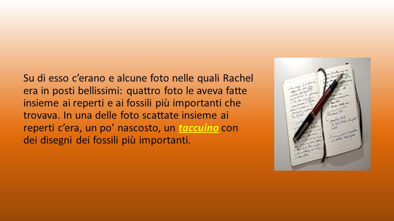 Su di esso c'erano e alcune foto nelle quali Rachel era in posti bellissimi: quattro foto le aveva fatte insieme ai reperti e ai fossili più importanti che trovava.