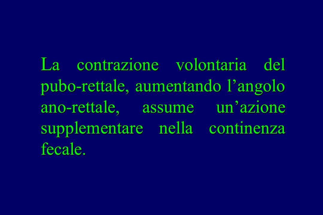 L a contrazione volontaria del pubo-rettale, aumentando l'angolo ano-rettale, assume un'azione supplementare nella continenza fecale.