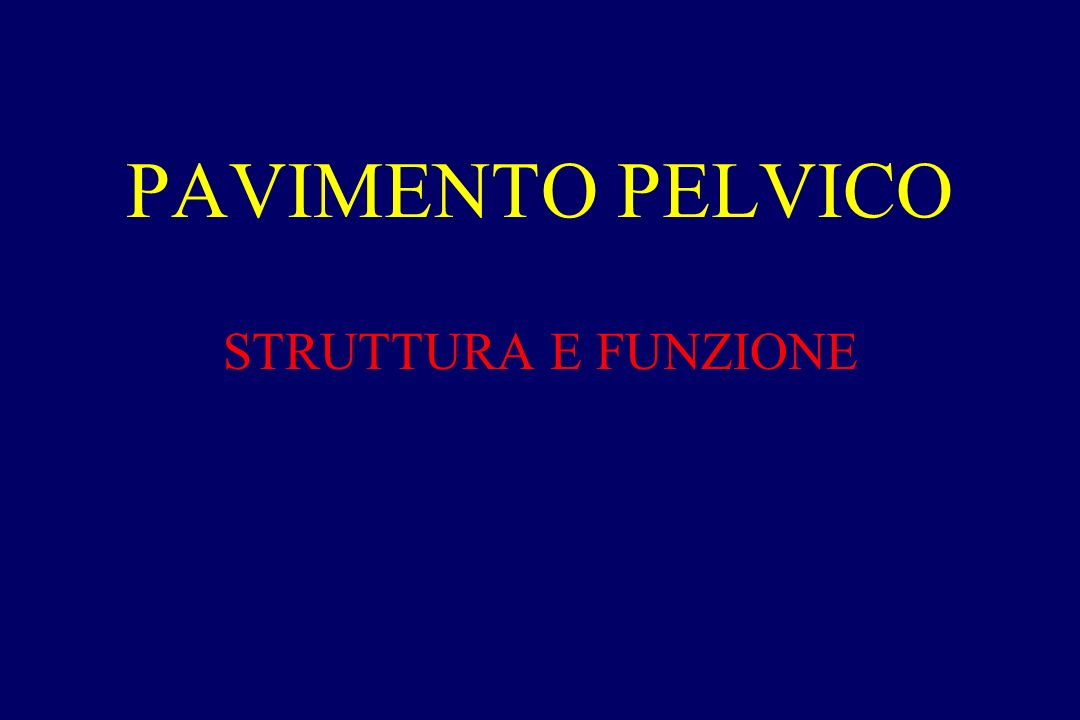 STRUTTURA E FUNZIONE PAVIMENTO PELVICO